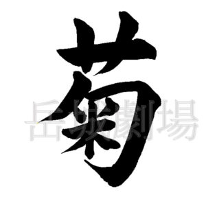 筆文字フリー素材「菊」